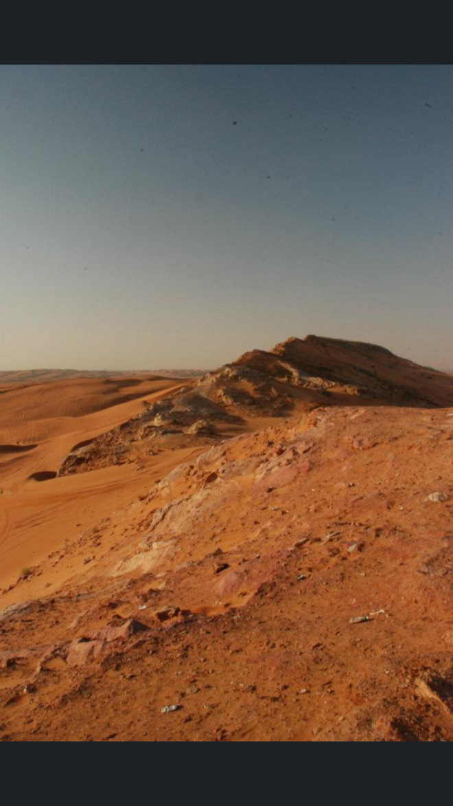 Red sand desert in the UAE
