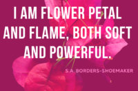 flower petals, s.a.borders-shoemaker quote, if we're being honest, blog